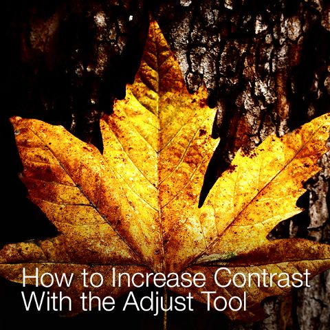 how to use adjust tool