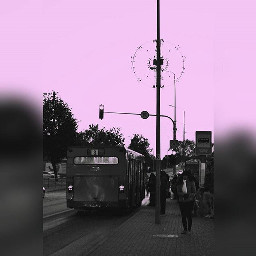 siauliai purple sky town busstop