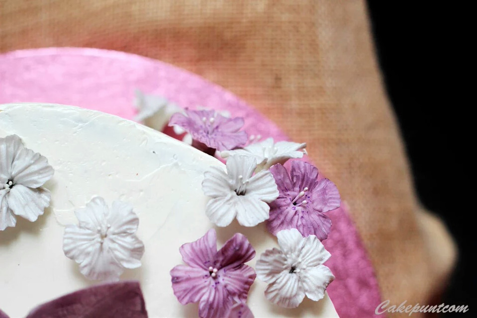 Flower cake   #flowerCake #flower #cake #sweet #cakepuntcom  #food #photography