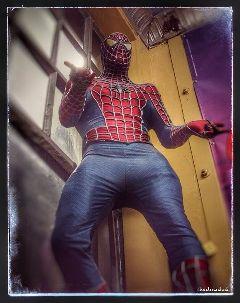 photography spiderman