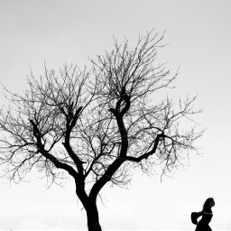 freetoedit tree bw blackandwhite running
