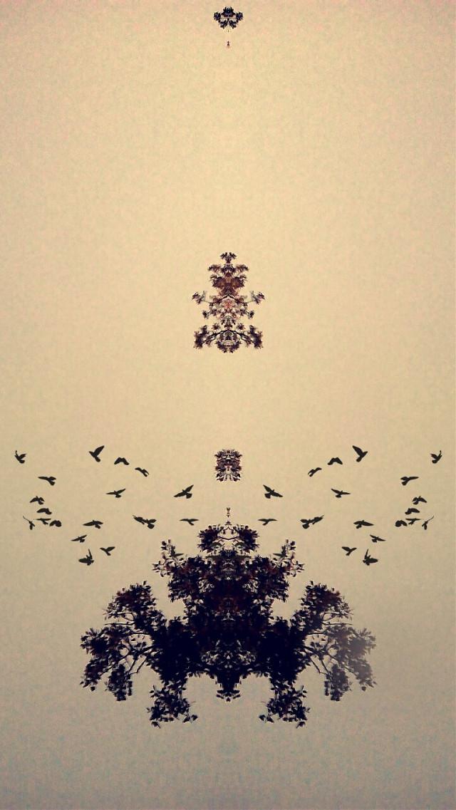 #tree  #birds #espejo #photo #photography   #blackandwhite