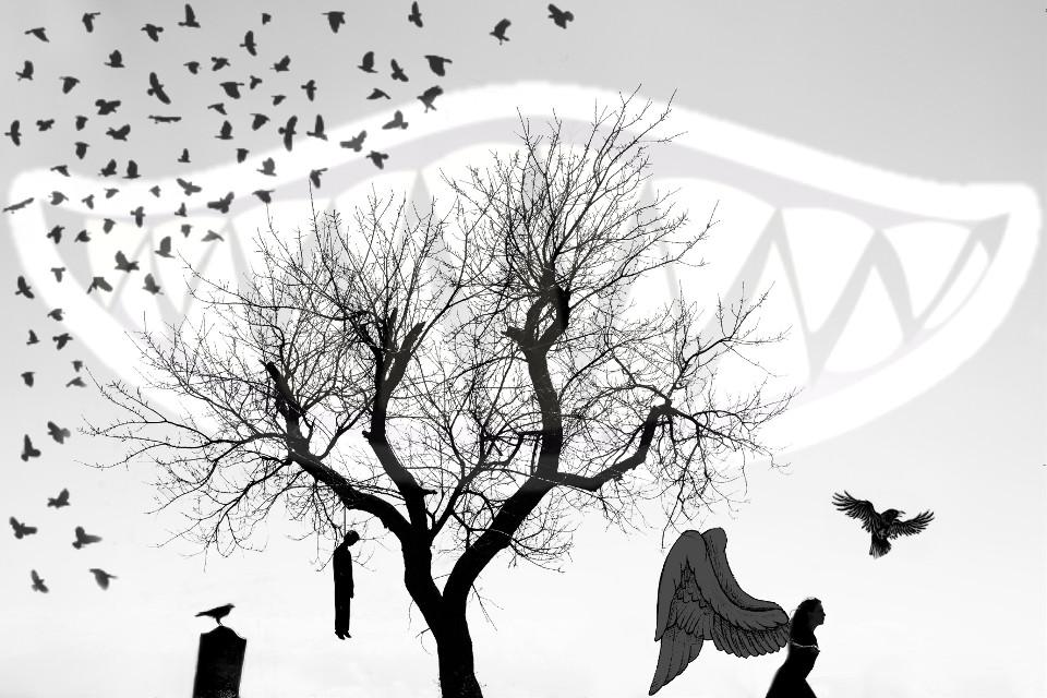 #blackandwhite  #Death #Raven  #Evil  #Dark  #Scary  @martyclotti @pa @rojo61 @stinawalfridsson @portraitsbynette @vilmafernandes @kimmonge @viveletour78  #freetoedit