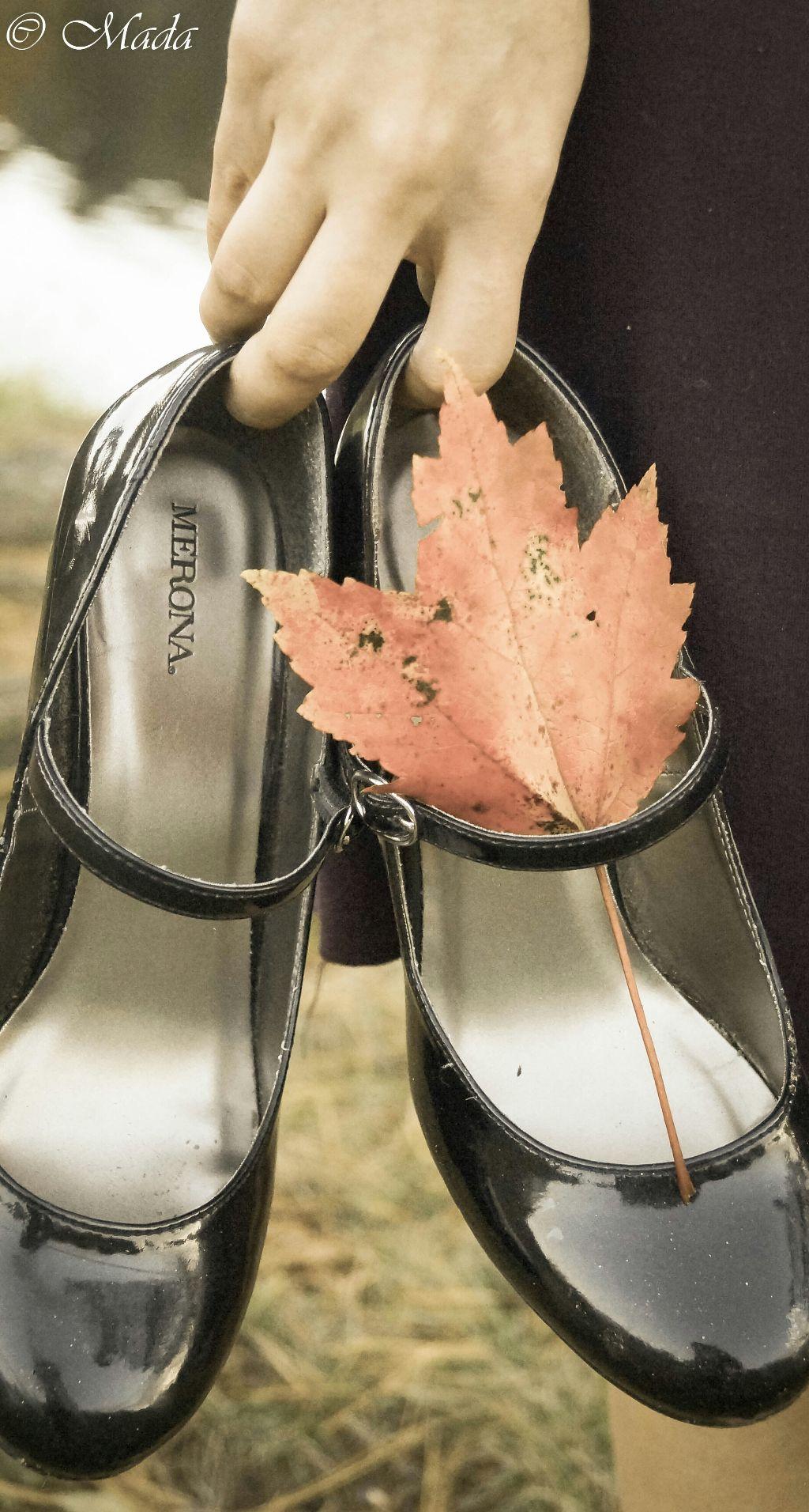 #creative  #cute   #colorful  #leaf #beautiful #nature #orange #shoes #hand #followme #photography  #photoshoot