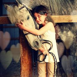 values horses barn love dailyinspirationpupsy