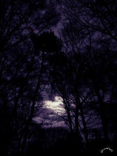 fullmoon clouds sky moon night