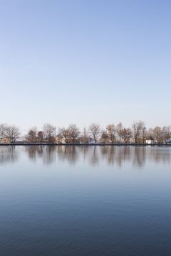freetoedit trees reflection water background