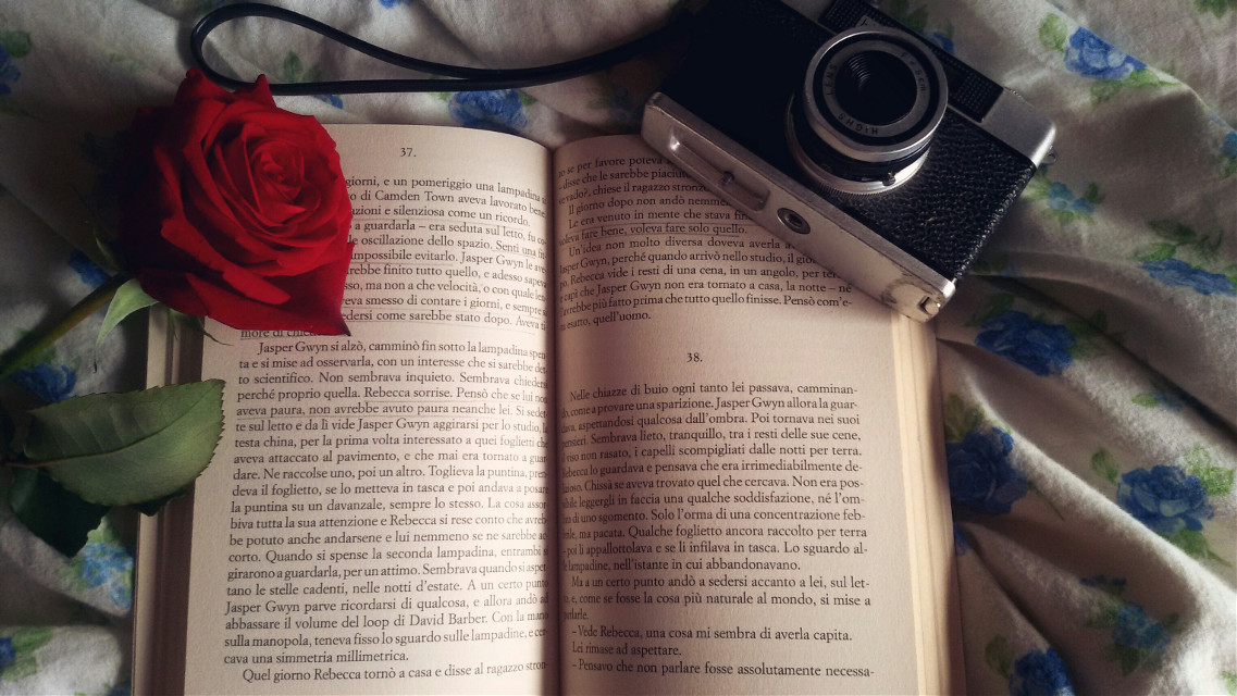 Love reading books in a Sunday Mourning #photography #cute #flower #love  #book  # Mr Gwyn  # Alessandro Baricco  #sunday