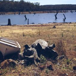 wapfilmeffects boat beach travel tasmania