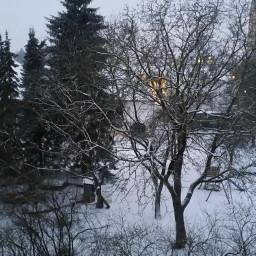 winter fretoedit beautiful