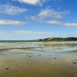 beach oneroabeach newzealand novazelandia auckland