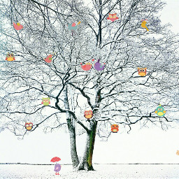 tree cute clipart pa