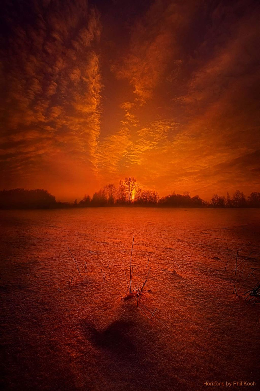 """"""" World Without End """" - Horizons by Phil Koch.  #winter #snow #weather #landscape #country #mood #peace #rural #light #sunrise #seasons #travel #nature #photography #colorful #emotions #love #hike"""
