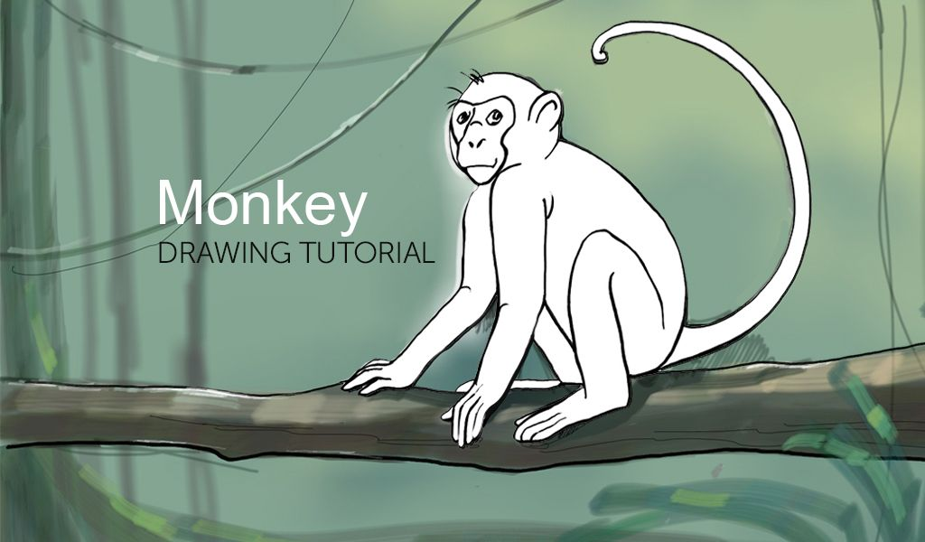 tutorial on monkey drawing