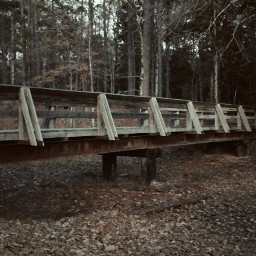 nature bridge alone