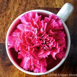 freetoedit flower pink mug interesting