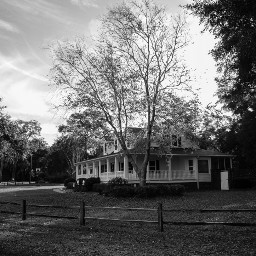 blackandwhite photography house colonial tree