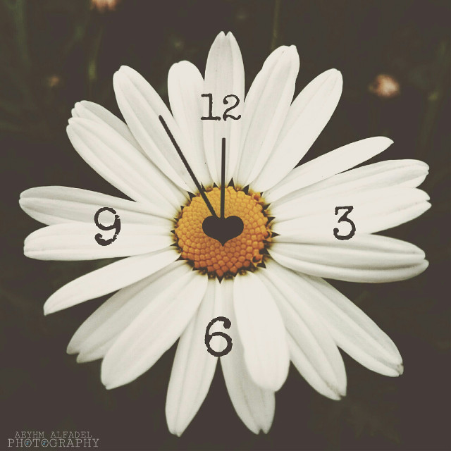 What is the time in your country?  (my snap and my edit) #clock  #love #emotions #nature #flower #polygonside #vintage #edited