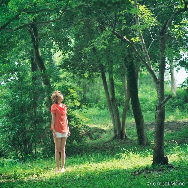 Forest  #japan #portrait #model #girl #green #beautiful