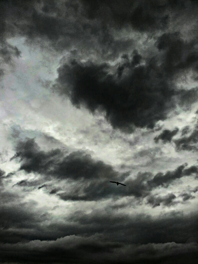 Waiting for the storm ...  #clouds #sky #storm #darkness #monochrome #lowangle #grey #nature