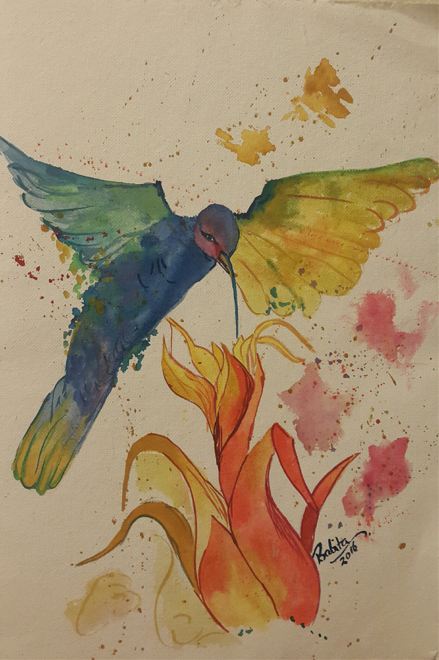 Water colors #colorful  #flower #bird