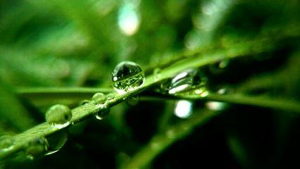 freetoedit rain april water
