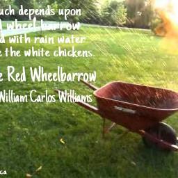 poems poetry red wheelbarrow
