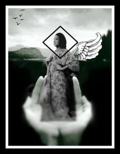 blackandgray angelwings diamond