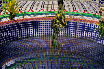 mobilephotowalk greenhouse plants mexico freetoedit