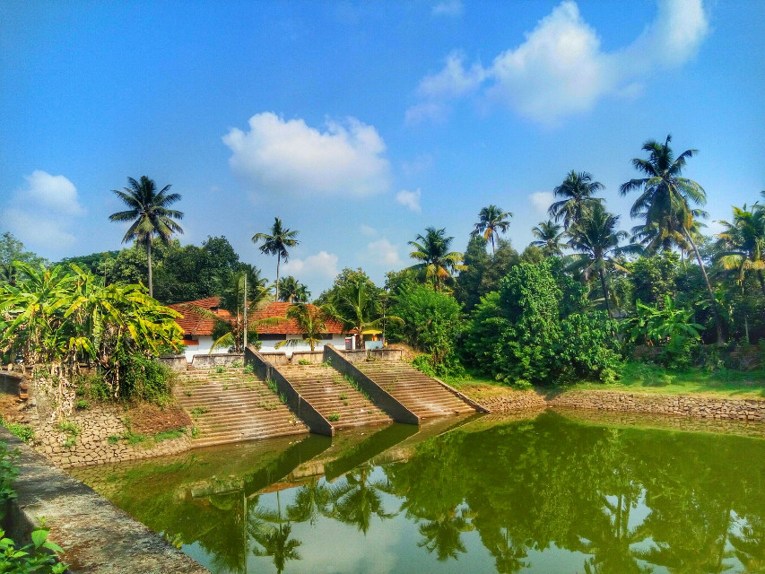 Temple pond, Kerala.  It's not a Sunday unless you completely waste it & then feel really rotten by 8 pm.  Happy Sunday my wonderful friends.. 😂   #colorful #hdr #nature #photography #travel #sunday #goodmorning ##morning #travel #palmtrees #humour #traveller #traveling #scene #beautiful #india #indiatraveldiaries #india_gram #indiaphotography #indiapictures #scenicview #lonelyplanetindia #incredibleindia #sky #kerala #architecture #culture #water #lake #incredible_view #places_wow