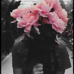 freetoedit myedit art flowers photography