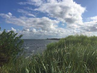 cove nature coast freetoedit
